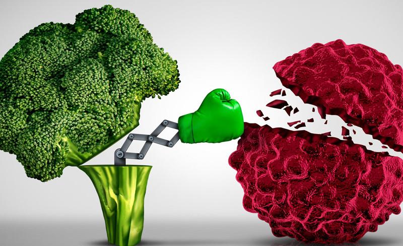 alimentos-sistema-imunologico